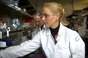 Dr. Julia Schaletzky and lab scientist Eddie Wehri at UC Berkeley's Center for Emerging and Neglected Diseases.